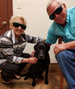Pet Laser Therapy